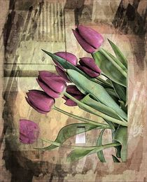 Purple Tulips. by rosanna zavanaiu