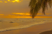 tropical sunset, Bejuco, Costa Rica by Craig Lapsley