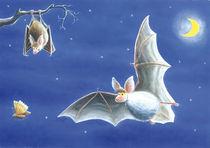 Fledermäuse von Axel Dissmann