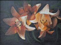 Fackellilien by Edith Gracin
