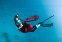 apnea by evgeny bashta