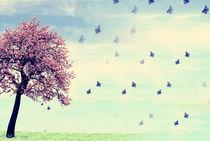 Schmetterlingstanz -3- by Christine  Hofmann