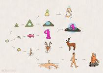 Evolution by Frank Zimmermann