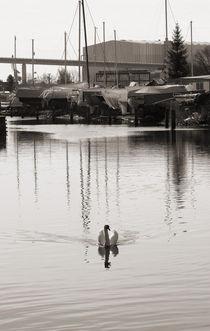 Weiße Segel setzen by Bastian  Kienitz