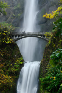 Fall at Multnomah Falls by Don Schwartz