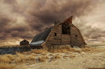 'Abandoned Barn' by Mindy McGregor