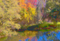 Autumn on the Pond by Don Schwartz