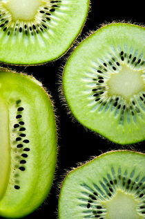 Kiwi von perfectlazybones