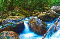 mountain streams von digidreamgrafix