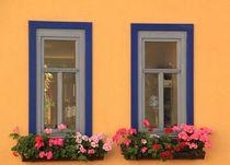 Zwei Fenster von Silke Bicker
