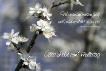 Ein lieber Gruß zum Muttertag von Karin Dietzel