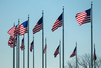 american flags by digidreamgrafix