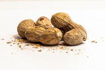 peanuts von digidreamgrafix