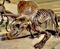 ANCIENT PET von Maks Erlikh