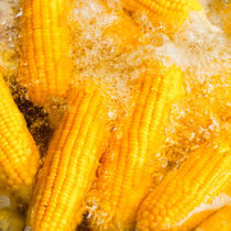 Corn by perfectlazybones