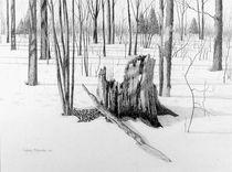 Land unter Naturschutz by Conrad Mieschke