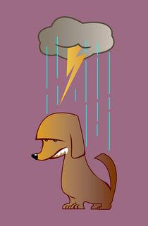 Bad Luck Dog von mdavidct