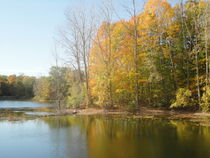 The Autumn Lake by Guy  Ricketts