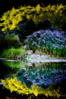 Colorful Reflection by loriental-photography