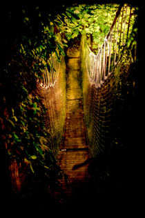 Deadly Path by loriental-photography