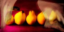 die fünf anderen Quitten by Edgar Emmels