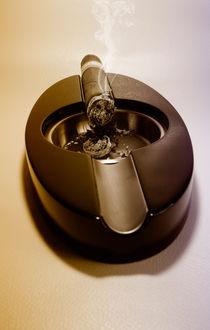 Zigarre Cohiba von Benjamin Feller