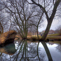 Willow Reflections von Keld Bach