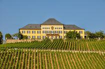 Schloss Johannisberg 02 von Erhard Hess