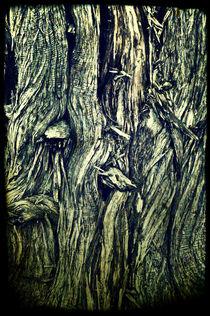 texture by Alexandr Verba
