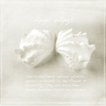 Angel Wings by Linde Townsend