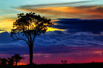 Sunset in Masai Mara, Kenya by Maggy Meyer