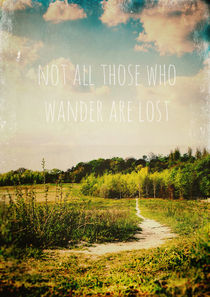 'not all those who wander are lost' von Sybille Sterk