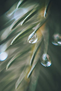 ° drops by Kay Fochtmann
