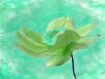 Anemone im Wind by Ingrid Eichhorst