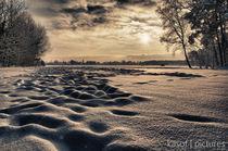 Darss im Winter von Nolas Kasof