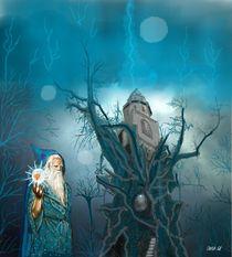 Merlin, der Zauberer von Heidi Schmitt-Lermann