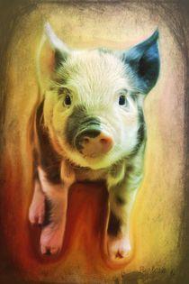 Pig is beautiful von barbara orenya