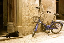 Bike and Cat by andrea5oo