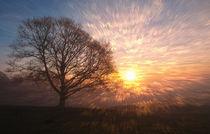 Sonnenaufgang  von Barbara  Keichel