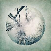 round treetops I von Priska  Wettstein