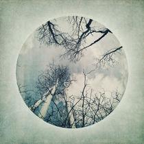 round treetops III von Priska  Wettstein