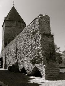 Stadtmauer by Frank Brucker