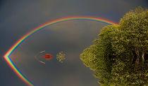 Rainbow von Jörg Nupnau