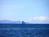 Lake Titicaca, Bolivia von andrea5oo