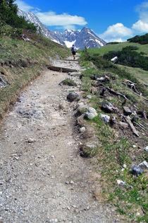 Alpen von Jens Berger