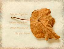 Leaves-poem