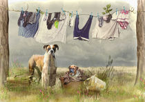 Wash Day von Trudi Simmonds