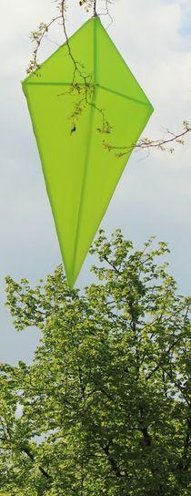 Hellgrüner Drache von Silke Bicker