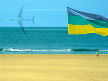 Strandfahne | Beach Flag | Bandera de playa by artistdesign