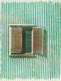 Vintage Shutters by Linde Townsend